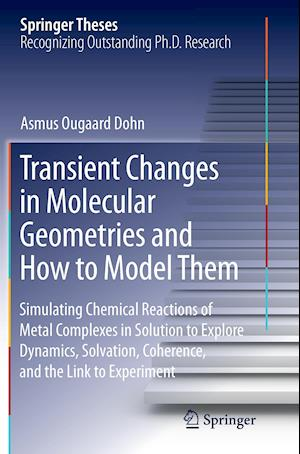 Bog, paperback Transient Changes in Molecular Geometries and How to Model Them