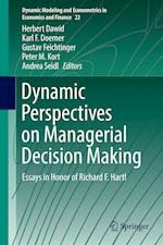 Dynamic Perspectives on Managerial Decision Making (Dynamic Modeling and Econometrics in Economics and Finance, nr. 22)