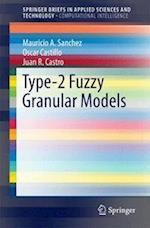 Type-2 Fuzzy Granular Models (Springerbriefs in Applied Sciences and Technology)