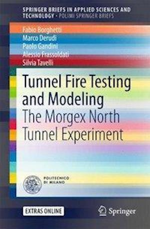 Bog, paperback Tunnel Fire Testing and Modeling af Fabio Borghetti
