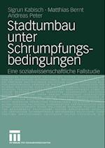 Stadtumbau unter Schrumpfungsbedingungen af Sigrun Kabisch, Matthias Bernt, Andreas Peter
