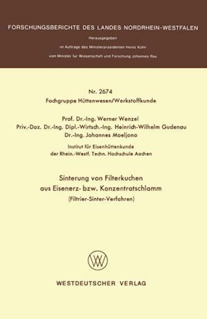Sinterung von Filterkuchen aus Eisenerz- bzw. Konzentratschlamm af Werner Wenzel