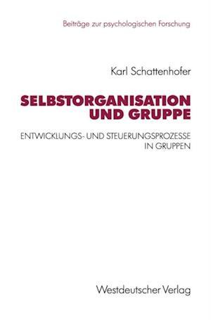 Selbstorganisation und Gruppe af Karl Schattenhofer