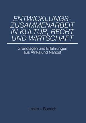 Entwicklungszusammenarbeit in Kultur, Recht und Wirtschaft