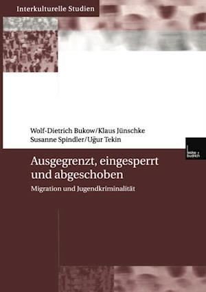 Ausgegrenzt, eingesperrt und abgeschoben af Klaus Junschke, Susanne Spindler, Wolf- Dietrich Bukow
