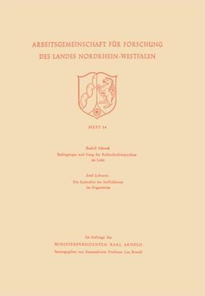 Bedingungen und Gang der Kohlenhydratsynthese im Licht / Die Endstufen des Stoffabbaues im Organismus af Rudolf Schenck