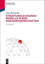 Strukturgleichungsmodelle in den Sozialwissenschaften af Jost Reinecke