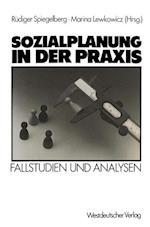 Sozialplanung in der Praxis af Rudiger Spiegelberg