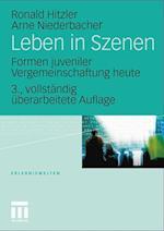 Leben in Szenen af Arne Niederbacher, Ronald Hitzler