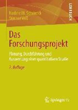 Das Forschungsprojekt af Nadine M. Schoneck, Werner Voss