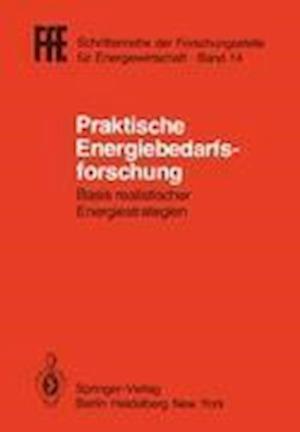 Praktische Energiebedarfsforschung af Helmut Schaefer
