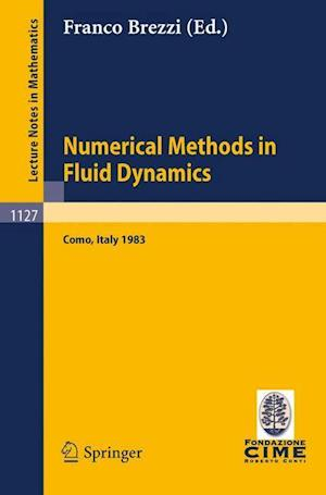 Numerical Methods in Fluid Dynamics af Franco Brezzi