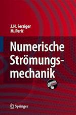 Numerische Stromungsmechanik