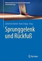 Sprunggelenk Und Ruckfuss (Meistertechniken in Der Operativen Orthopadie Und Unfallchir)