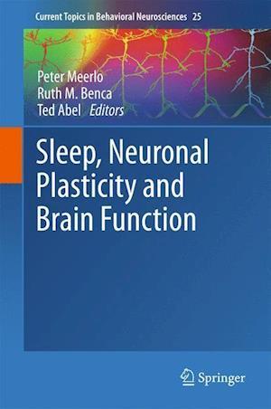 Sleep, Neuronal Plasticity and Brain Function af Peter Meerlo
