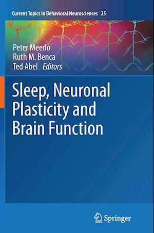 Bog, paperback Sleep, Neuronal Plasticity and Brain Function af Peter Meerlo