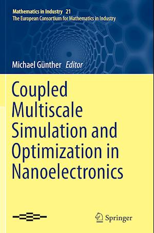 Bog, paperback Coupled Multiscale Simulation and Optimization in Nanoelectronics af Michael Gunther