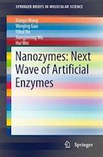 Nanozymes (Springerbriefs in Molecular Science)