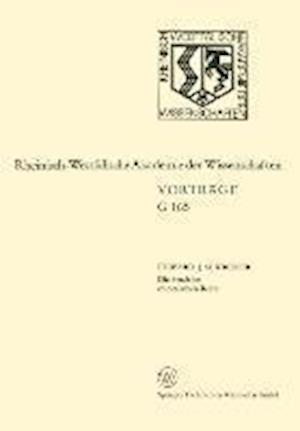 Die Strafe Im Chinesischen Recht af Eduard J. M. Kroker, Eduard J. M. Kroker