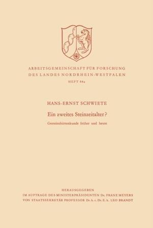 Ein zweites Steinzeitalter? af Hans-Ernst Schwiete