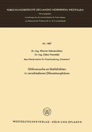 Gluhversuche an Stahldrahten in verschiedenen Ofenatmospharen af Werner Schwenzfeier