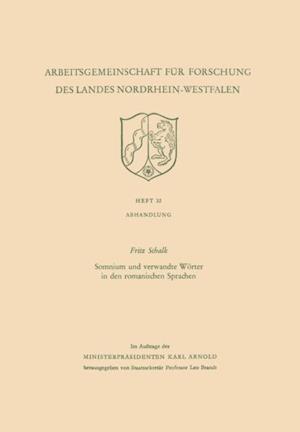Somnium und verwandte Worter in den romanischen Sprachen af Fritz Schalk