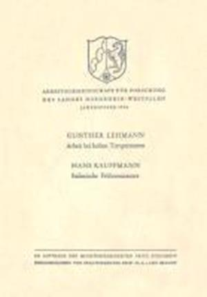 Arbeit Bei Hohen Temperaturen. Italienische Fruhrenaissance af Gunther Lehmann