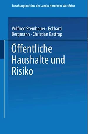 Offentliche Haushalte und Risiko af Eckhard Bergmann, Christian Kastrop, Wilfried Steinheuer