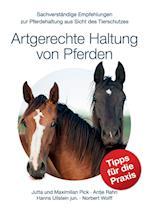 Artgerechte Haltung Von Pferden