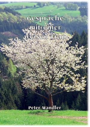 Gesprache Mit Einer Weisen Frau af Peter Wandler
