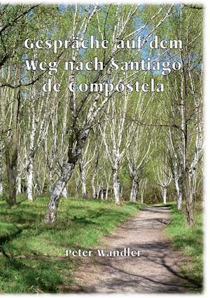 Bog, paperback Gesprache Auf Dem Weg Nach Santiago de Compostela af Peter Wandler