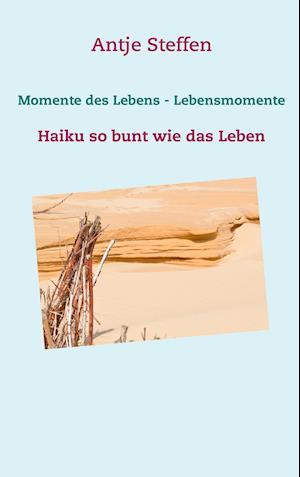Bog, paperback Momente Des Lebens - Lebensmomente af Antje Steffen