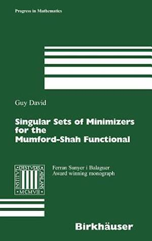 Singular Sets of Minimizers for the Mumford-Shah Functional af David Guy