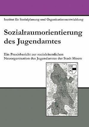 Sozialraumorientierung Des Jugendamtes af Thomas Fink, Marco Szlapka