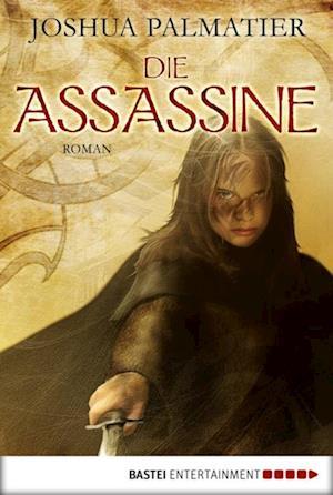 Die Assassine af Joshua Palmatier
