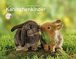 Kaninchenkinder Posterkalender (Heye kalender 2017)