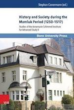 History and Society During the Mamluk Period (1250-1517) (Mamluk Studies, nr. 13)