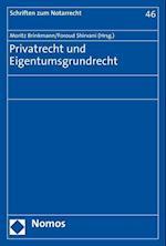 Privatrecht Und Eigentumsgrundrecht (Schriften Zum Notarrecht, nr. 46)