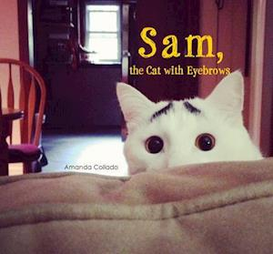 Bog, paperback Sam, the Cat with Eyebrows af Amanda Collado
