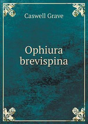 Ophiura Brevispina af Caswell Grave