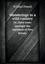 Wanderings in a Wild Country Or, Three Years Amongst the Cannibals of New Britain af Wilfred Powell