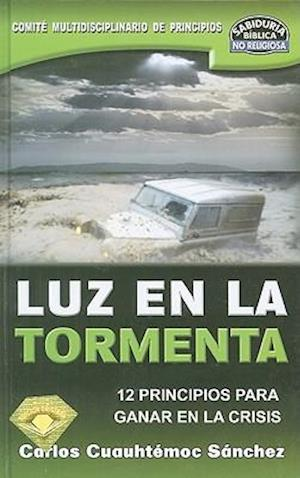 Luz en la Tormenta af Carlos Cuauhtemoc Sanchez