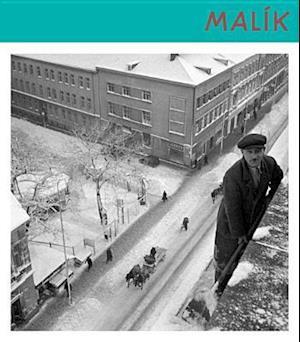 Bog, hardback Viliam Malik 1912-2012 af Aurel Hrabusicky