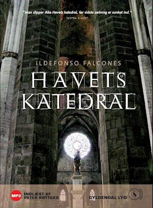 Havets katedral af Ildefonso Falcones