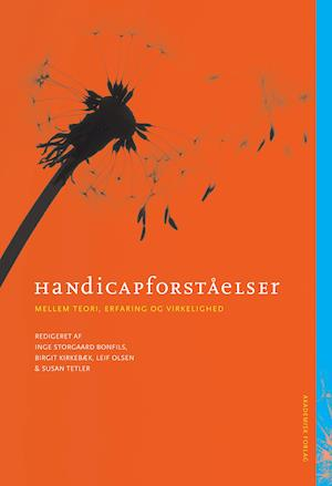 Handicapforståelser - mellem teori, erfaring og virkelighed af Birgit Kirkebæk, Leif Olsen, Inge Storgaard Bonfils