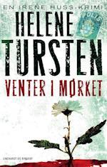 Venter i mørket (Irene Huss-serien, nr. 9)