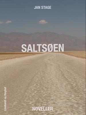 Saltsøen af Jan Stage