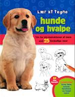 Lær at tegne hunde
