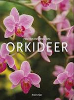 Politikens bog om orkideer