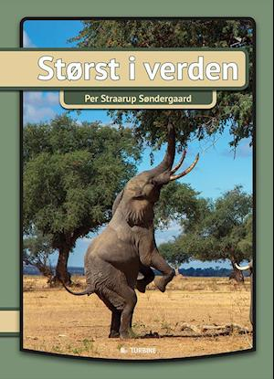 Bog, hardback Størst i verden af Per Straarup Søndergaard
